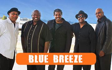Blue Breeze Band at Polliwog Park - Hollywood Swinging