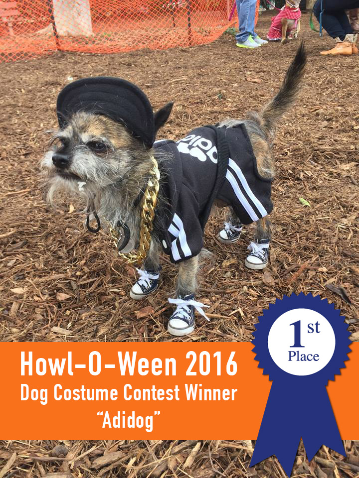 FIRST PLACE - ″Adidog″ aka Dino owned by James Farran